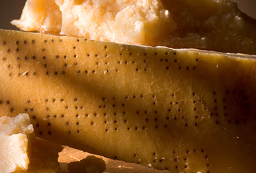 How to recognize Parmigiano Reggiano