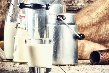 Parmigiano Reggiano's ingredients
